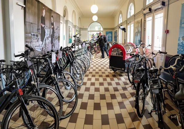 arnfreds cykler
